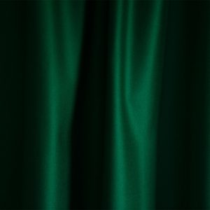 Merino Wool Baize – Intelligence Green