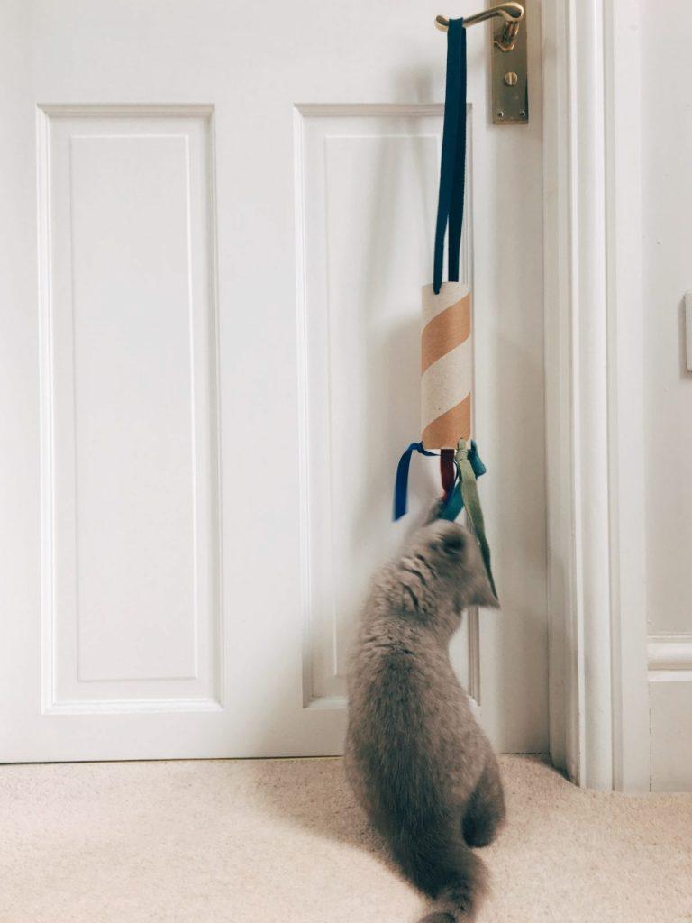 Eco-friendly door hanger cat toy