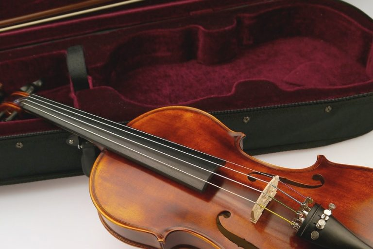 Read more about the article Instrument Case Fabric – For Lining and Repair